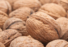 Walnut background Royalty Free Stock Photo