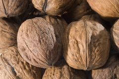 Walnut background. Close-up with several walnut Stock Images