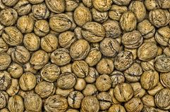 Walnut background. Grunge scattered walnut background texture Stock Image