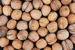 Walnut background Royalty Free Stock Photography