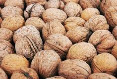 Walnut background Stock Images