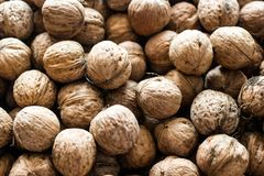 Walnut background texture stock image