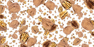 Walnut background (on white) Royalty Free Stock Photography