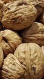 Walnut. For backgrounds or textures. Close-up crustacean with shell royalty free stock photography