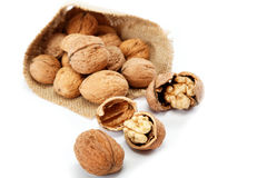 Walnut in a bag. Royalty Free Stock Photo