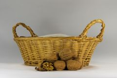 Walnut in basket. Walnuts in front of a litle basket Royalty Free Stock Photography