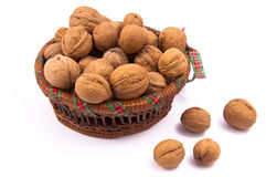 Walnut in a basket Stock Images