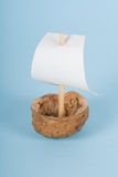 Walnut boat Royalty Free Stock Photo