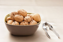 Walnut in a bowl with nutcracker Royalty Free Stock Image