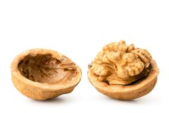 Walnut broken into two halves close-up, on a white. Isolated royalty free stock photos