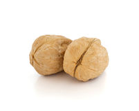Walnut brown nut closeup on white background. Walnut brown nut closeup isolated on white background Royalty Free Stock Photography