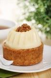 Walnut cake Royalty Free Stock Photography