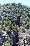 Walnut Canyon. Clift dwellings at Walnut Canyon, National Monument in Arizona royalty free stock photo