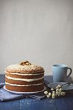 Walnut Carrot Cake Stock Image
