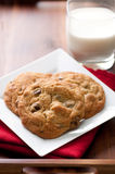 Walnut and chocolate chip cookies Royalty Free Stock Photos