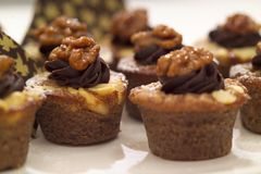 Walnut and chocolate muffins Stock Image