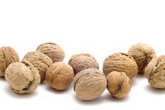 Walnut close up Stock Image