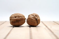 The walnut close up Royalty Free Stock Photography