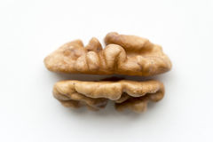 Walnut core Royalty Free Stock Photos