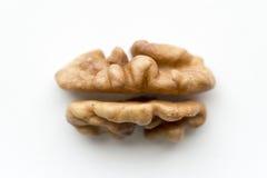 Walnut core Royalty Free Stock Photos