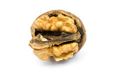 Walnut cracked Stock Photography
