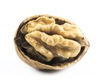 Walnut cracked in half Royalty Free Stock Photo