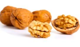 Walnut and a cracked walnut Stock Image