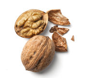 Walnut and a cracked walnut Stock Photography