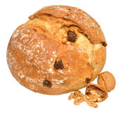 Walnut And Date Cob Bread Royalty Free Stock Image