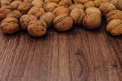Walnut. In everyday life and nature Stock Photography