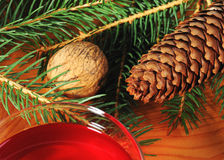 Walnut and fir tree cone with fir tree branch Royalty Free Stock Image