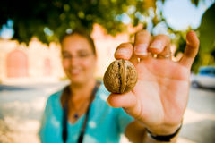 Walnut in foreground between fingers Royalty Free Stock Photography