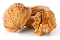 Walnut fruit and shield Stock Photo