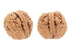 Walnut fruit on white Royalty Free Stock Photos
