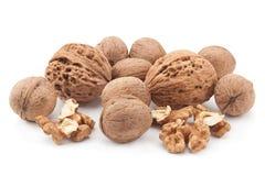 Walnut fruit on white Royalty Free Stock Images