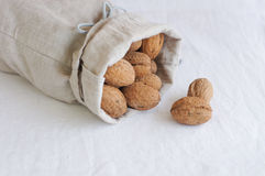 Walnut in gray linen bag Royalty Free Stock Photos