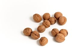 Walnut group Royalty Free Stock Images