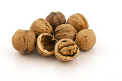 Walnut group Stock Image