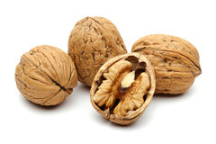 Walnut group Royalty Free Stock Image