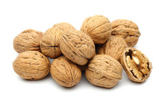 Walnut group royalty free stock photos