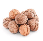 Walnut group isolated on a white Stock Photos