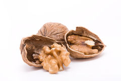 Walnut Halfs Stock Images
