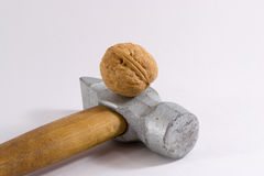 Walnut and Hammer Stock Photos