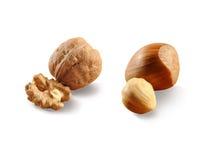 Walnut and hazelnut Stock Photos