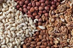 Walnut,Hazelnut, Almond and Cashew Stock Image