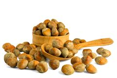 Walnut hazelnut isolate on a white background. Nuts hazel of a T. Urkish wooden bowl. The concept of a healthy dietary diet packed with vitamins vegetarianism royalty free stock photography