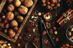 Walnut and hazelnut mix and spices for cooking Stock Photo