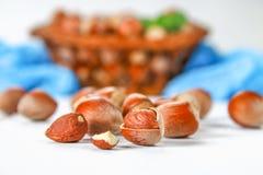 Walnut hazelnuts in a wicker basket on a white wooden table. Walnut hazelnuts in a wicker basket on a white wooden table Stock Photography