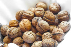 Walnut Heap Backgroung Stock Images