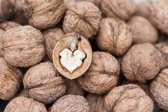 Walnut heart Stock Photos
